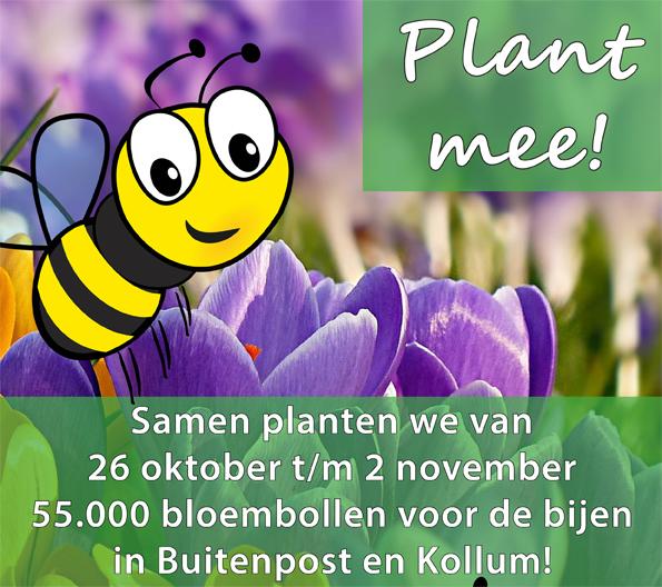 Bloeiende Bollen voor Bijen en Burgers in Buitenpost en Kollum
