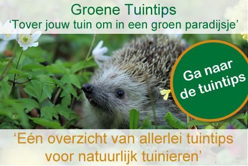 Groene tuintips: één overzicht met allerlei tuintips voor natuurlijk tuinieren